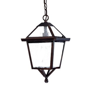 Darby Home Co Britannia 1-Light Outdoor Hanging Lantern