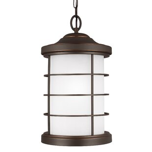 Newcastle 1-Light Outdoor Pendant