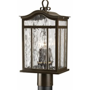Triplehorn 3-Light Casual European Lantern Head By Alcott Hill Outdoor Lighting