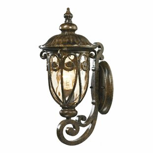 Astoria Grand Sargent 1-Light Outdoor Wall lantern