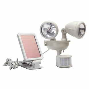 Petrucci 1-Watt LED Solar Powered Dusk to Dawn Battery Operated Outdoor Security Spot Light with Motion Sensor