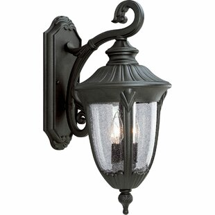 Alcott Hill Triplehorn 2-Light Outdoor Wall Lantern