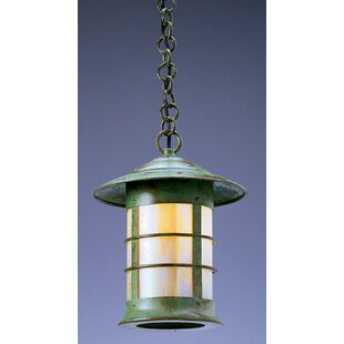 Newport 1-Light Outdoor Hanging Lantern