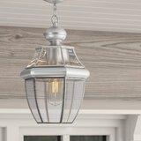 Weisberg 1-Light Outdoor Hanging Lantern