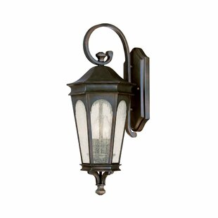 Weber 2-Light Outdoor Wall Lantern by Charlton Home