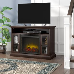 Kelli 47 TV Stand with Fireplace by Darby Home Co