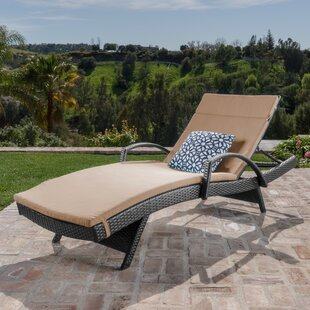 Gilleasbuig Outdoor Wicker Armed Chaise Lounge with Cushion