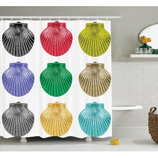 Seashells Species Shower Curtain + Hooks