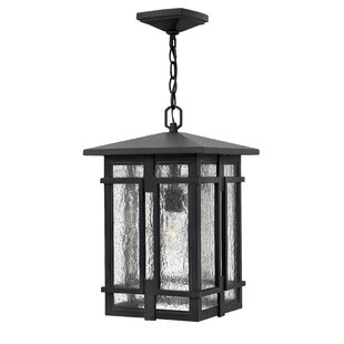 Tucker 1-Light LED Outdoor Hanging Lantern
