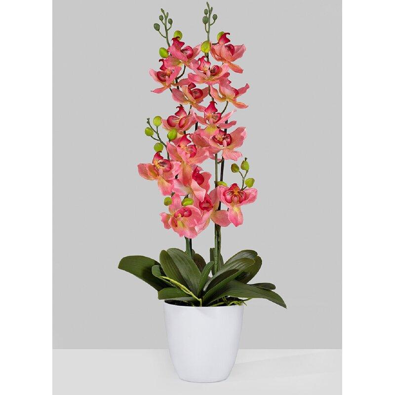 Mercer41 26 Artificial Flowering Plant In Pot Reviews Wayfair
