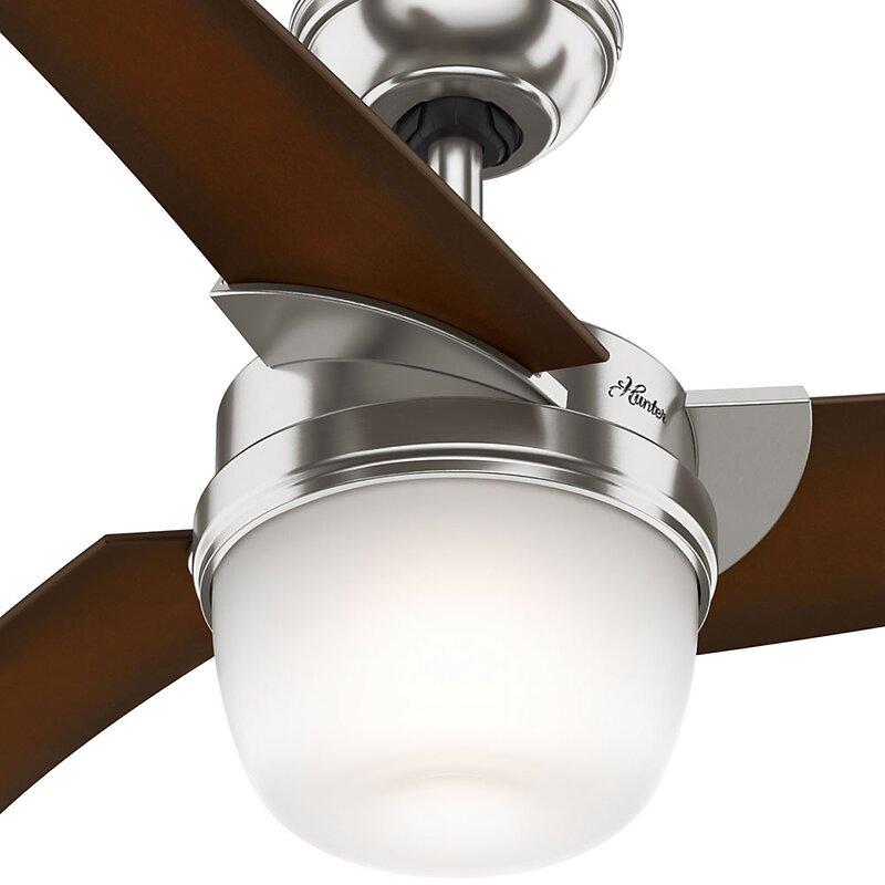 Eurus 54 Inch Single Light 3 Blade Ceiling Fan