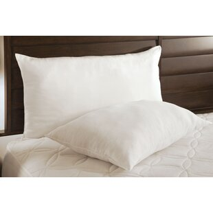 The Big Squeeze Fiber Pillow (Set of 2)