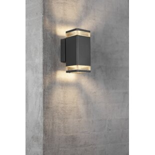 Elm 2-Light Outdoor Sconce By Nordlux