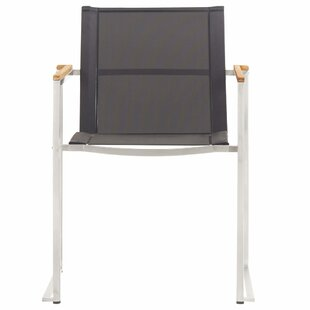 Shabaz Garden Chair (Set Of 2) By Sol 72 Outdoor