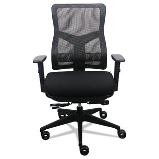 Raynor Mesh Task Chair