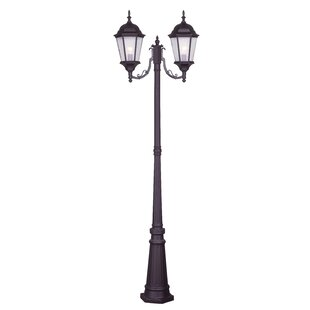 Darby Home Co Busse Outdoor 2-Light 86
