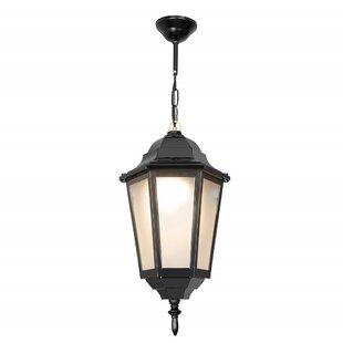 Brocklesby 1 Light Outdoor Hanging Lantern Image