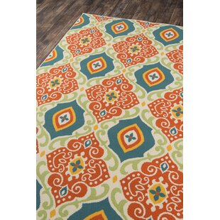 Orange/Green Indoor/Outdoor Area Rug