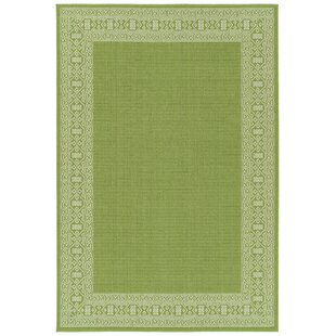 Poteet Lime Green Indoor/Outdoor Area Rug