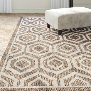 Miami Brown/Tan Indoor/Outdoor Area Rug