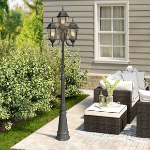 Darby Home Co Busse Outdoor 4-Light 95