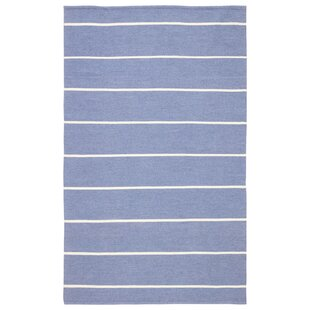 Mcfadden Stripes Handwoven Flatweave Blue/Ivory Indoor/Outdoor Area Rug