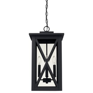 Alcott Hill Aticus 4-Light Outdoor Hanging Lantern