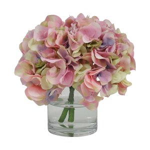Hydrangea in Glass Water Vase