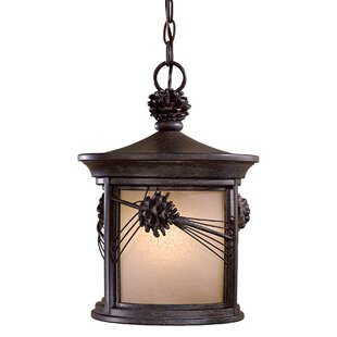 Big Save Abbey Lane 1-Light Outdoor Hanging Lantern By Great Outdoors by Minka