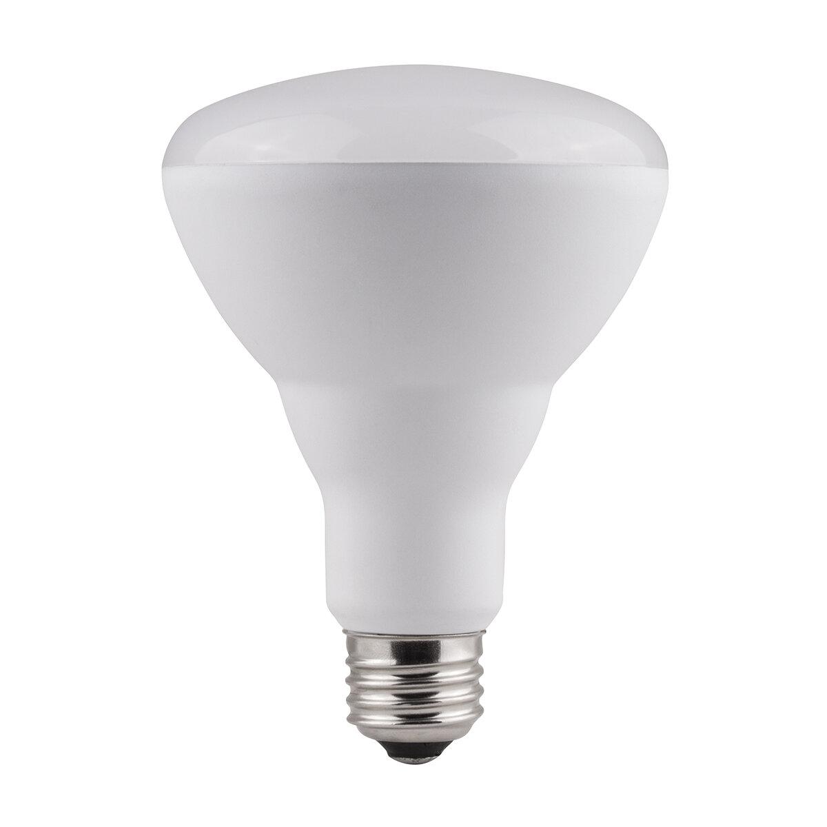Bazz Smart Home 4 Watt 65 Watt Equivalent Br30 Led Smart Dimmable Light Bulb Daylight 5000k E26 Medium Standard Base Wayfair