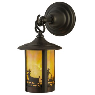 Find the perfect 1-Light Outdoor Wall Lantern By Meyda Tiffany