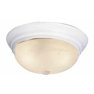 1-Light Ceiling Fixture Flush Mount by Volume Lighting