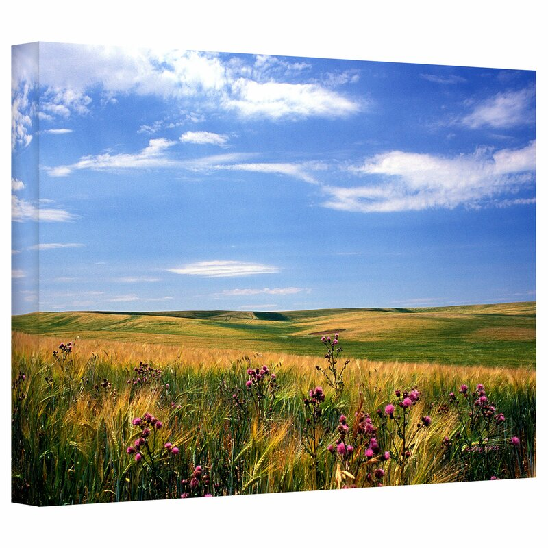 Artwall Field Of Dreams Wrapped Canvas Photographic Print Wayfair
