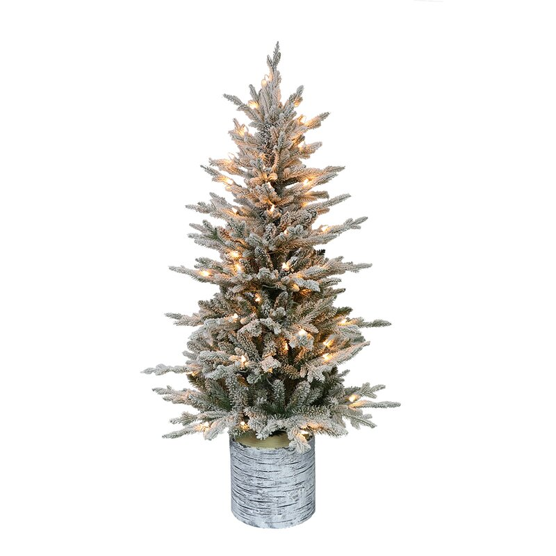 Pre Lit Flocked Artificial Christmas Trees: The Holiday Aisle Pre-Lit Potted Flocked 4.5' Green Fir