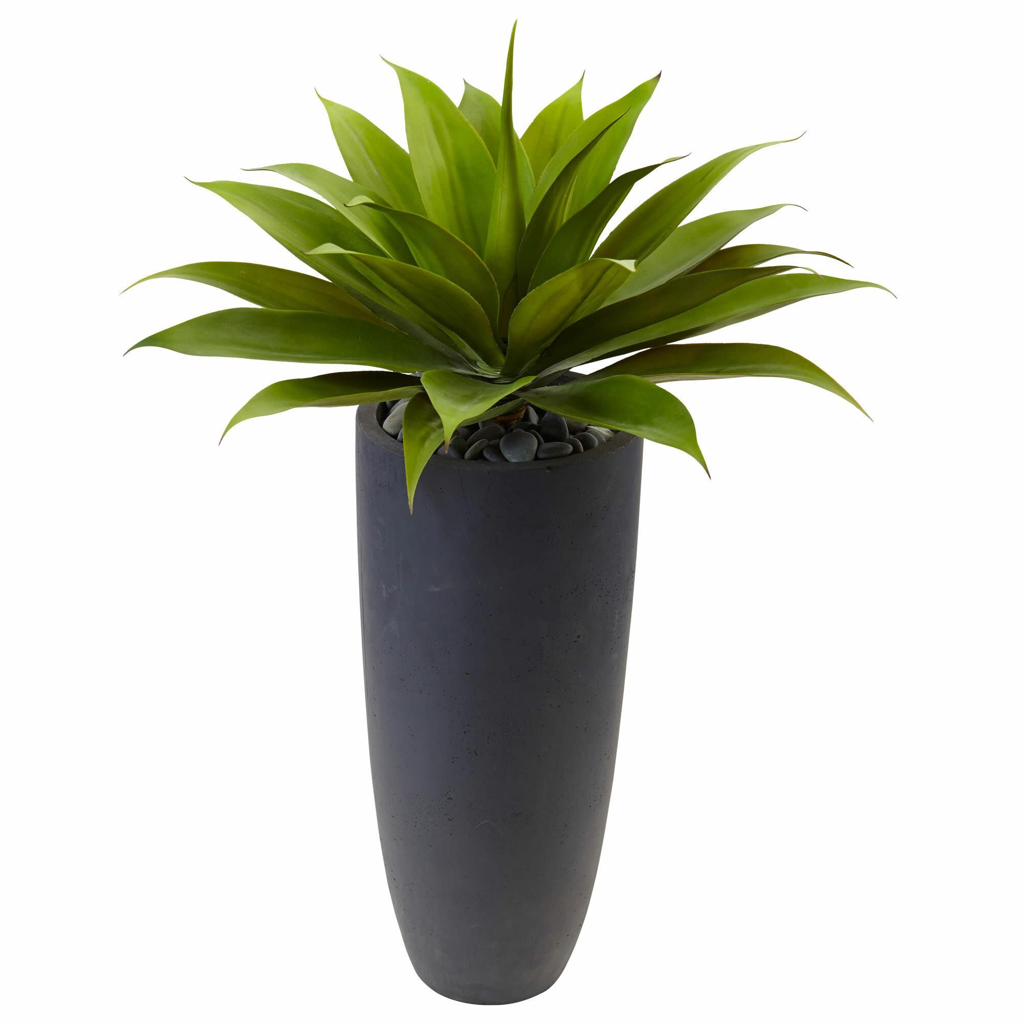 Orren Ellis 14 Artificial Agave Plant In Planter Reviews Wayfair