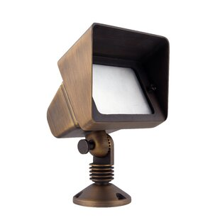 Williston Forge Spilsby 1-Light Flood Light