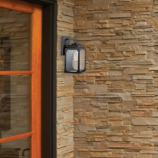 Retzlaff 1-Light Outdoor Wall Lantern