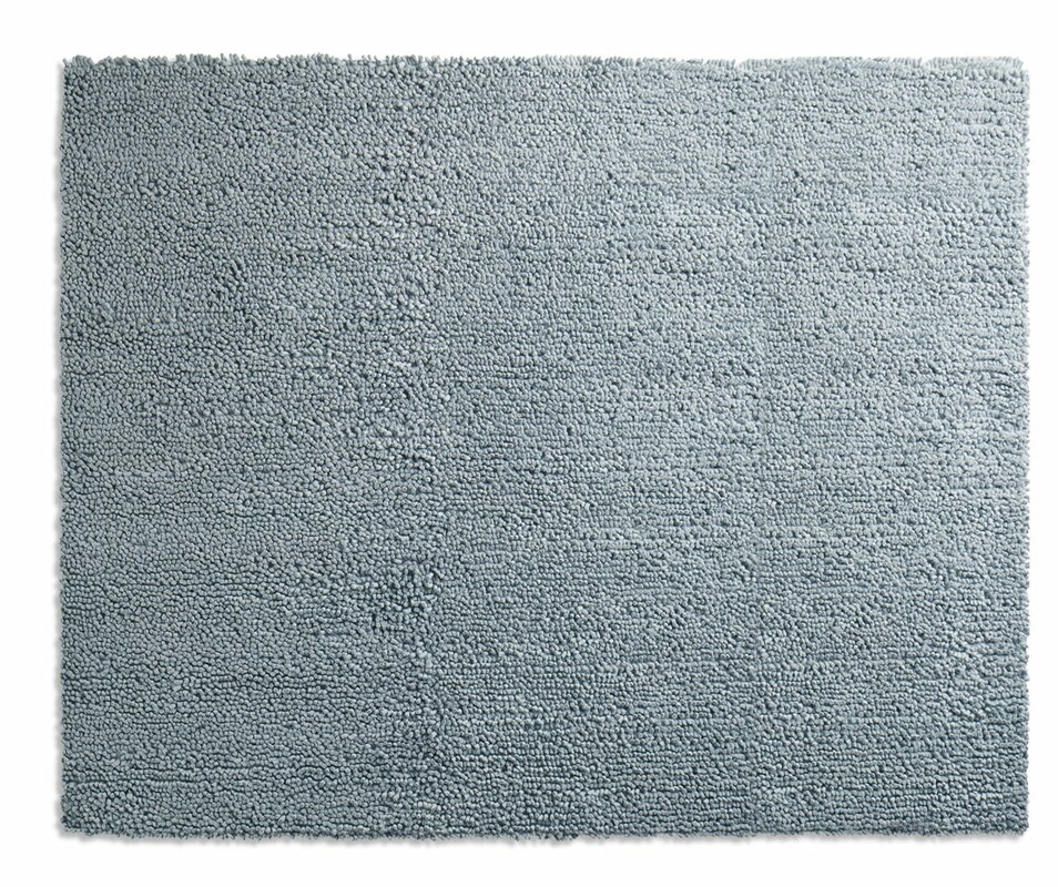 cush light blue area rug & reviews | allmodern