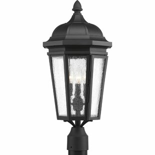 Price Check Edgewater 3-Light Lantern Head By Alcott Hill
