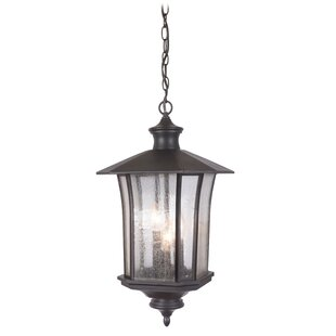 Darby Home Co Searsmont 3-Light Outdoor Hanging Lantern
