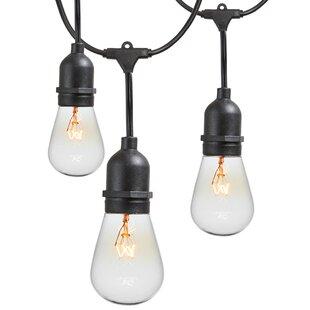 48 ft. 15-Light Standard String Light by Newhouse Lighting
