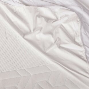 Giannini Waterproof Mattress Cover by Alwyn Home Purchase