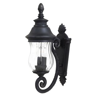 Great Outdoors by Minka Newport 2-Light Outdoor Sconce