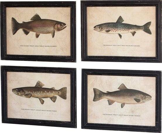 Loon Peak \'Trout Prints Under\' 4 Piece Picture Framed Graphic Art ...