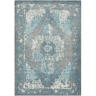 Where buy  Almendarez Distressed Teal/Off-White Area Rug By Bungalow Rose