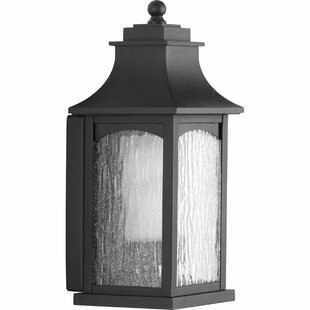 De Witt 1-Light Wall Lantern