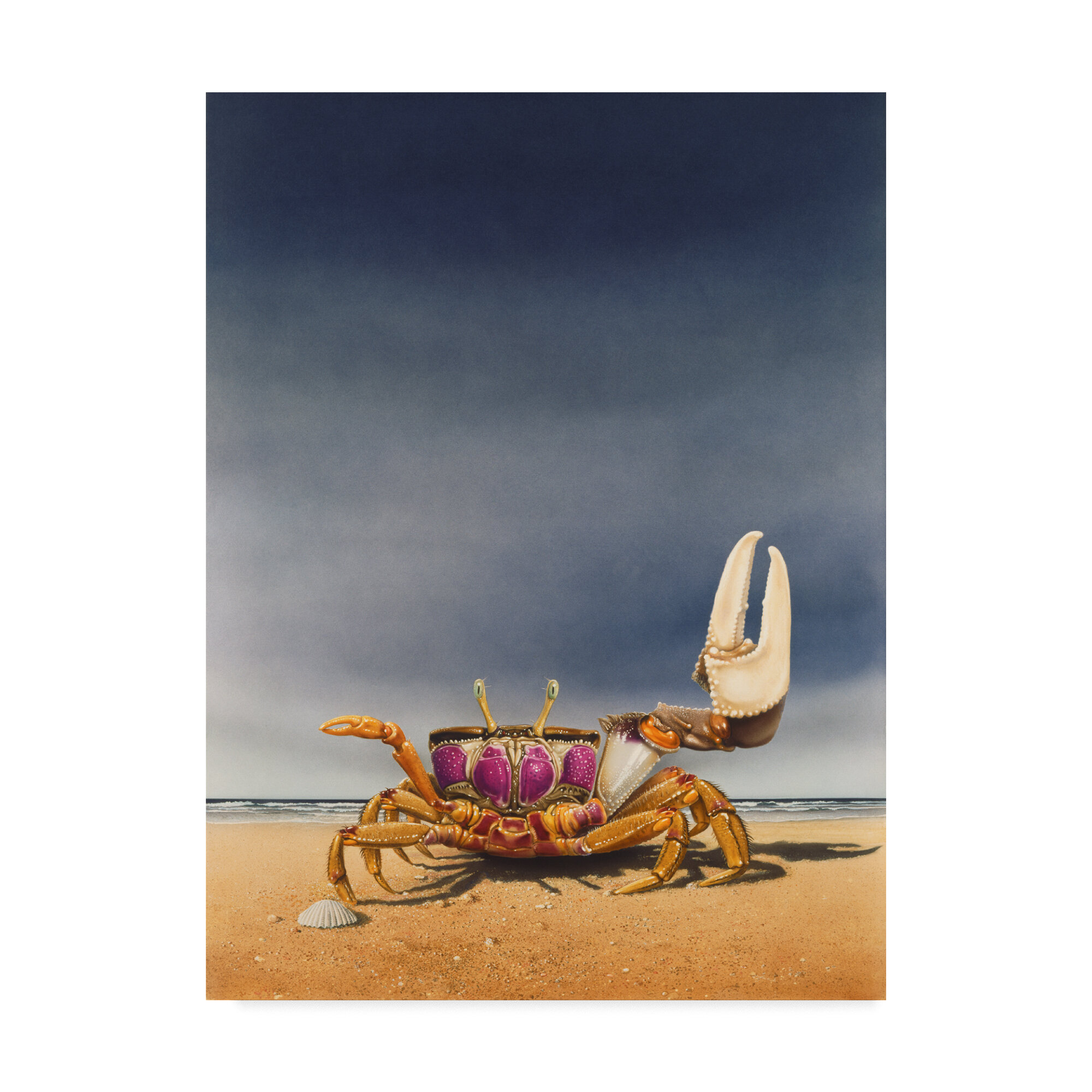 Trademark Art Fiddler Crab Acrylic Painting Print On Wrapped Canvas Wayfair