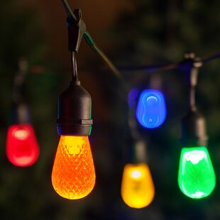 Globe String Lights By Wintergreen Lighting Outdoor Lighting
