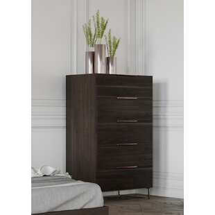 https://secure.img1-fg.wfcdn.com/im/44098607/resize-h310-w310%5Ecompr-r85/8589/85897469/kinzey-5-drawer-chest.jpg