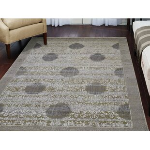 Comparison One-of-a-Kind Humberto Oxidized Hand-Knotted 8'9 x 12'1 Wool/Silk Gray/White Area Rug By Isabelline